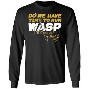 Do We Have Time To Run Wasp